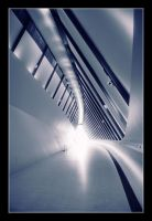 Towards the light by Replicante