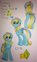 Ponysona ref. Sheet by Cloudy-03