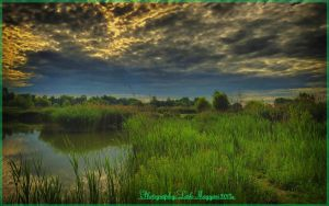 Hungarian landscapes.HDR-picture(photo series)31. by magyarilaszlo