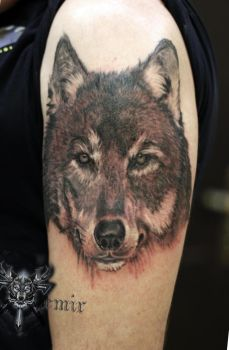 Wolf in realism by TimHag