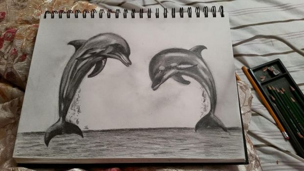 Dolphines by teressab