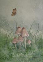Beautiful Mushrooms. by SueMArt
