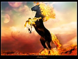 Fire horse by chouk57