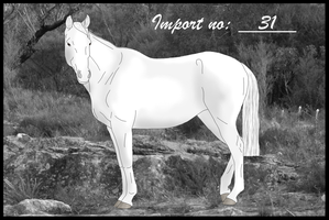 Import 31 by Orstrix