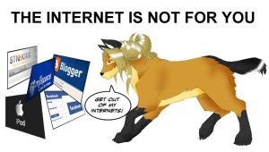 The Internet is not for You by felflowne