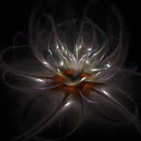 pearl flower by luisbc
