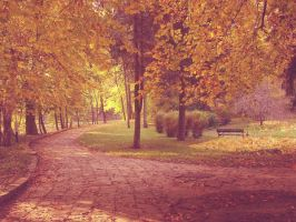 park by narare