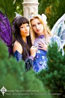 Fairy Glances by Lillyxandra
