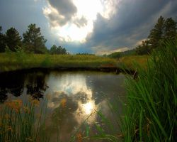 Austin Bluffs Pond by greenunderground