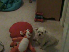 Angel chilling with Tigger by Jaws1996