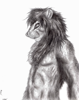 Lion Sketch by Master-Mofeto