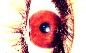 See through your eyes by Zoehi