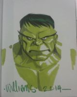 Mean Green for Willy T by BroHawk