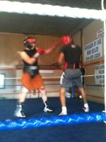 Serious sparring #1 by Dreadmaster231