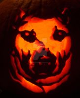 Pitbull Pumpkin by FreeMeadows