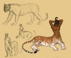 Tiger centaurs oh my by KestrelWings