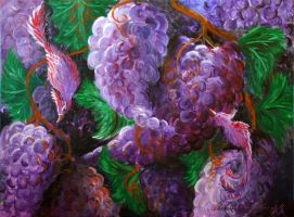 Grapes by AgneAl