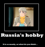 APH: Russia's Hobby poster by TinoV