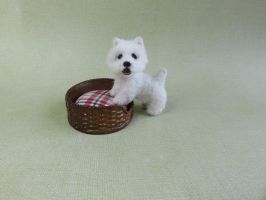 ooak miniature westie dog Casper by squizzy7o7