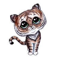 A Little Tiger by Drakeshya