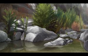 Landscape 2 - Reflecting Rocks by Vaig