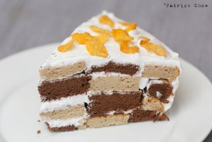 Chequered cake 1 by patchow