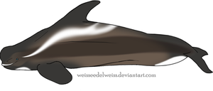 Wraith Whale Adopt: Little-Singer by WeisseEdelweiss