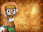 Tikal The Echidna: Wallpaper? by icefatal