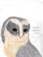 Colored Black Barn Owl by Aryncoryn