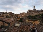 Roof tops. Siena. Italy by jennystokes