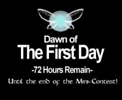 DAWN OF THE 1ST DAY until the end of my contest!!! by Linksliltri4ce
