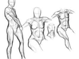 anatomy study by SilentIvo
