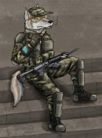 Art-trade:  Soldier taking a smoke by SteinWill