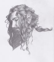 Thorin Wet Hair by Seraph5