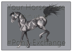Pony-Exchange Lines Updated by Astralseed