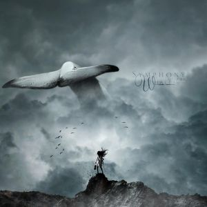Symphony of the Whales by brlmk