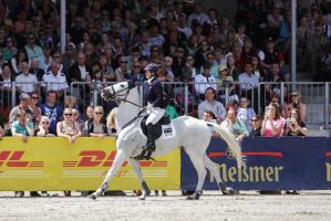3DE Show Jumping Phase Stock 113 - Hard Pull by LuDa-Stock