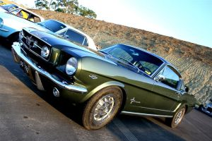 stang by Fry350