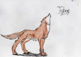 wolf's rain: Toboe by My-Inner-Demon-676