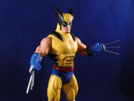 DC DIRECT WOLVERINE by EV214