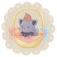 Zorua in basket by oi-m