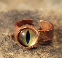 Copper Cat Eye Ring by OrestesGraphics