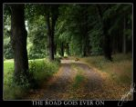 The Road Goes Ever On by jouzinka