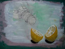 still life photography. by Human-Canvas