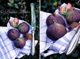 Figs 1 by Lily-of-the-Vallley