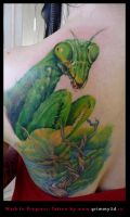 Mantis tattoo WIP by grimmy3d