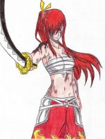 Erza Scarlet Fairy Tail by davidlatorre