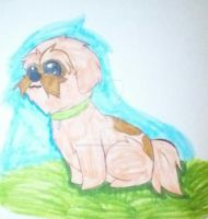 Toby Turner's Dog by EclipseQuest2
