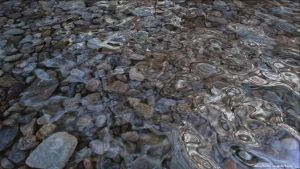 Riverbed by VickyM72