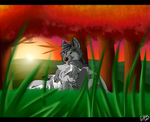 Request: Sunset Warmth by IcePhoenix202